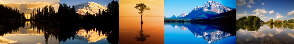 reflectivediscover